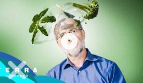 Ist vegane Ernährung Unsinn?